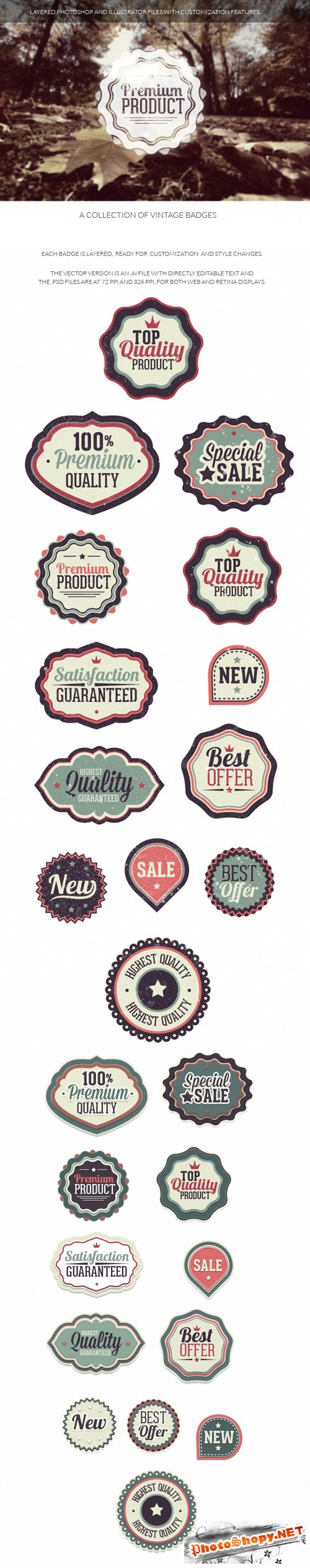 Vintage Badges Vector Elements Set