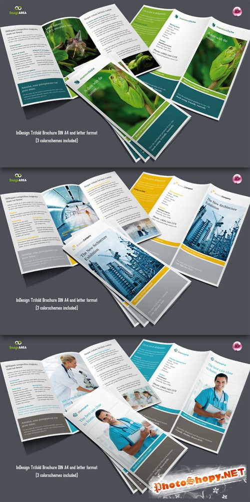 CreativeMarket - Flexible Trifold Brochure / 3 Colors