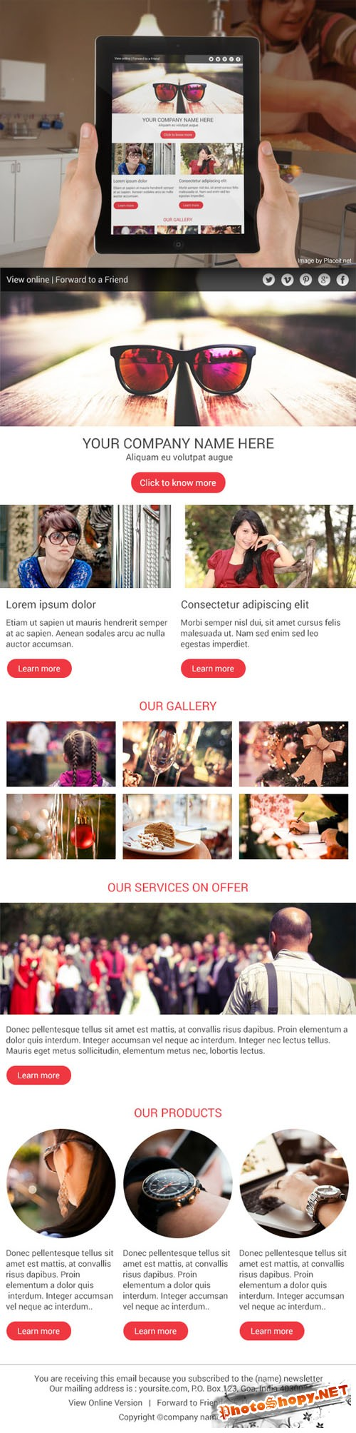 CreativeMarket - Clean Multipurpose Email Newsletter 22024