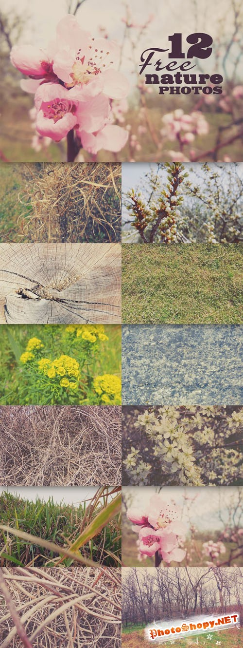 12 Quality Nature Photos Textures Vol.1