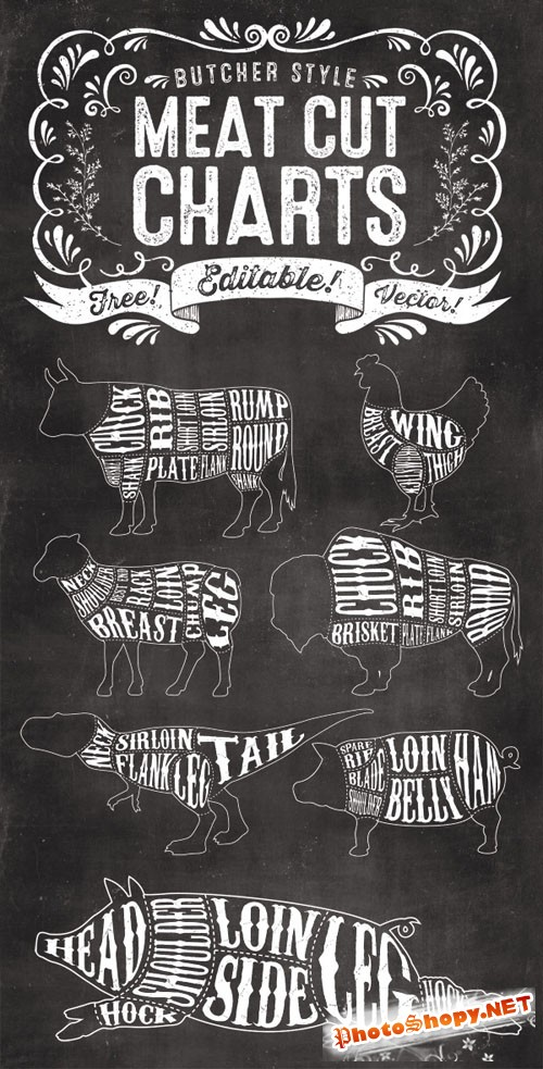 7 Editable Butcher Meat Cut Chart Vector Illustrations