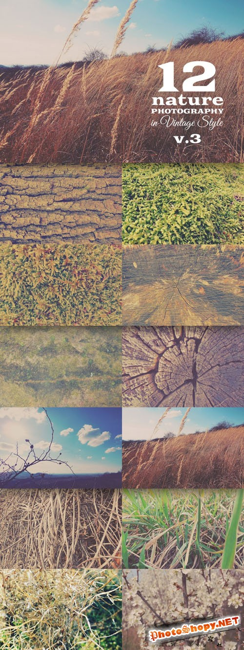 12 Quality Nature Photos Textures Vol.3