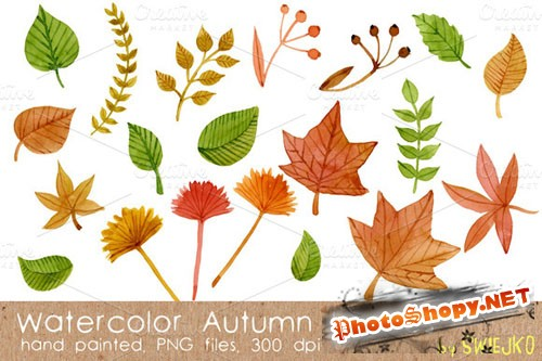 CreativeMarket - Watercolor Leaves 14831