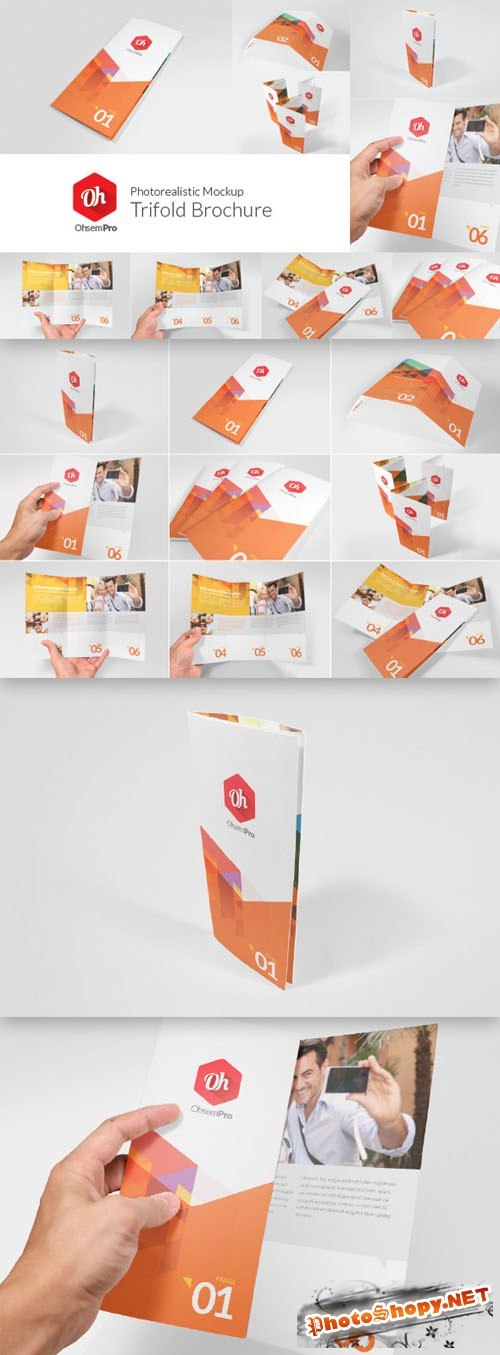 CreativeMarket - OhsemPro - Trifold 80658