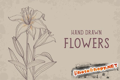 CreativeMarket - Hand drawn flowers set 39652
