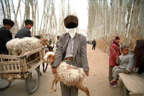 Шаблон для мужчин - С овцой