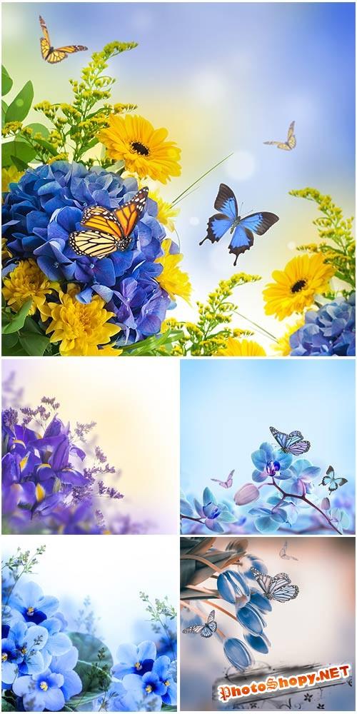 Нежные цветочные фоны - растровый клипарт