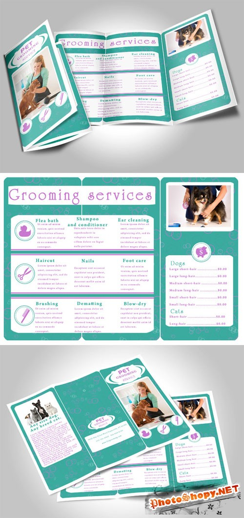 Pet Grooming Services Brochure