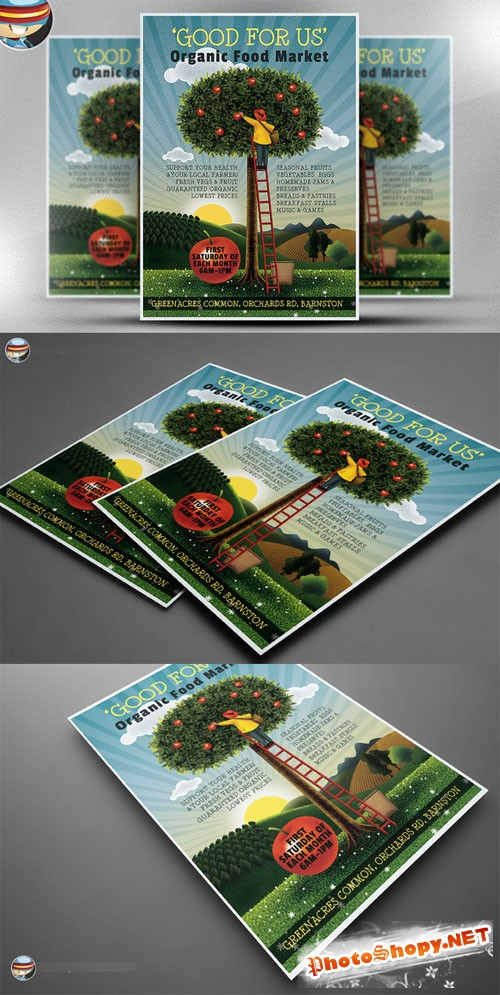 CreativeMarket - Organic Food Market Flyer Template