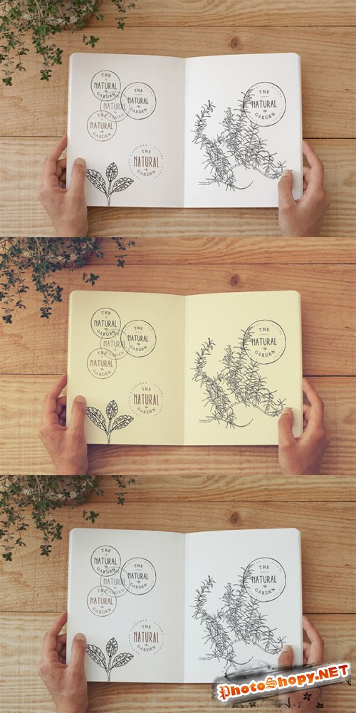 CreativeMarket - Notebook Mock Up