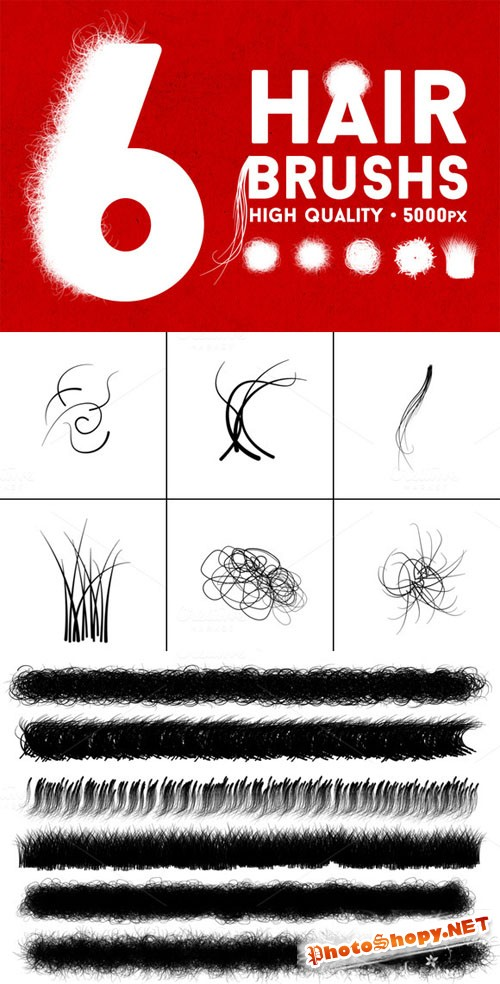 CreativeMarket - The Hair Strand - Photoshop Brush