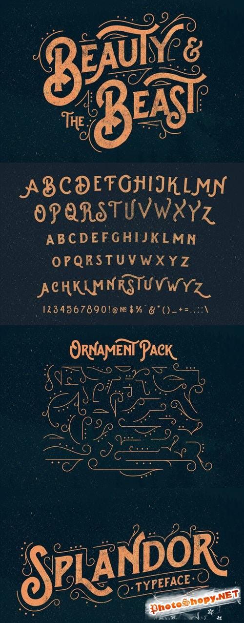 CreativeMarket - Splandor Typeface