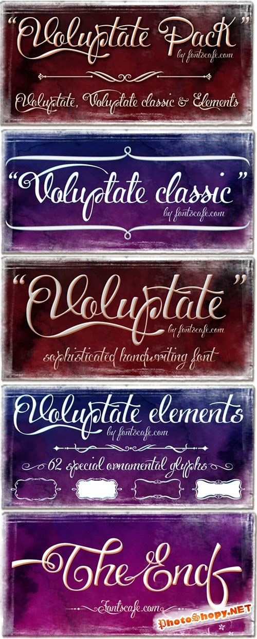 Voluptate Font Family