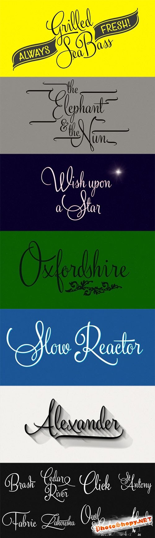 Silver Font Family
