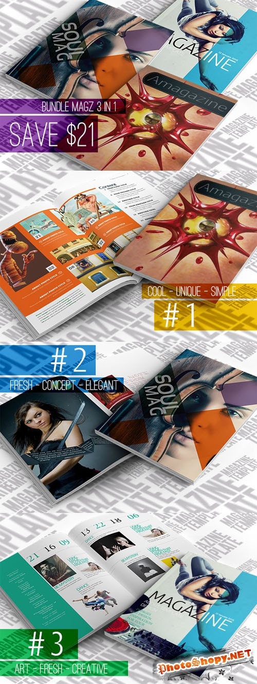 CreativeMarket - Bundle Magazine 3 IN 1