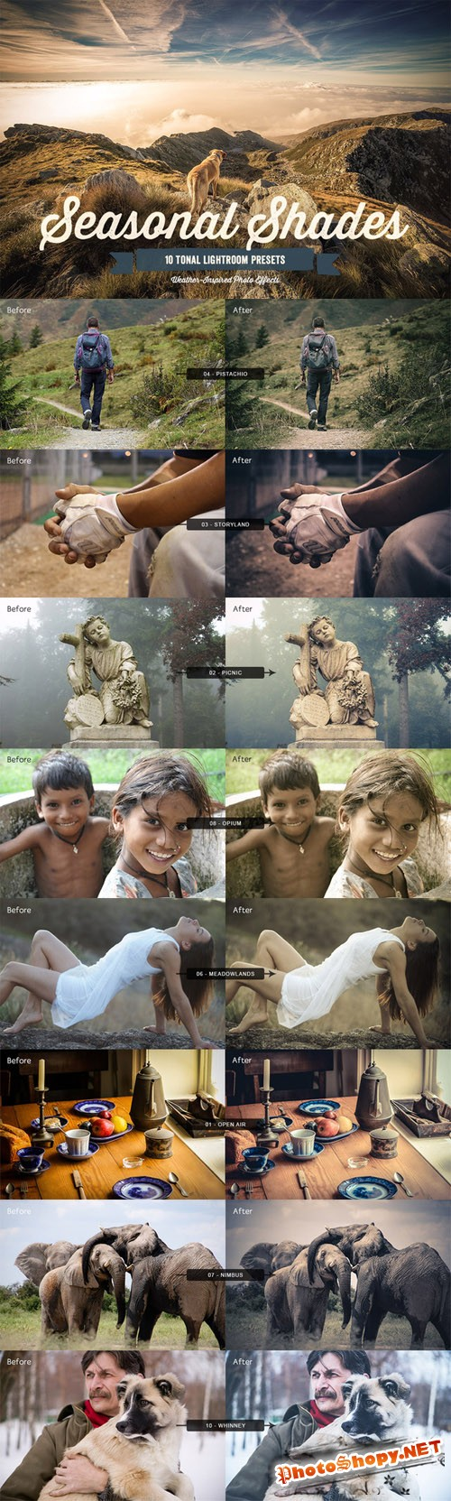 CreativeMarket - Seasonal Shades Lightroom Presets 1