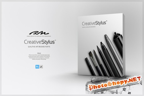 RM Creative Stylus 2 in 1