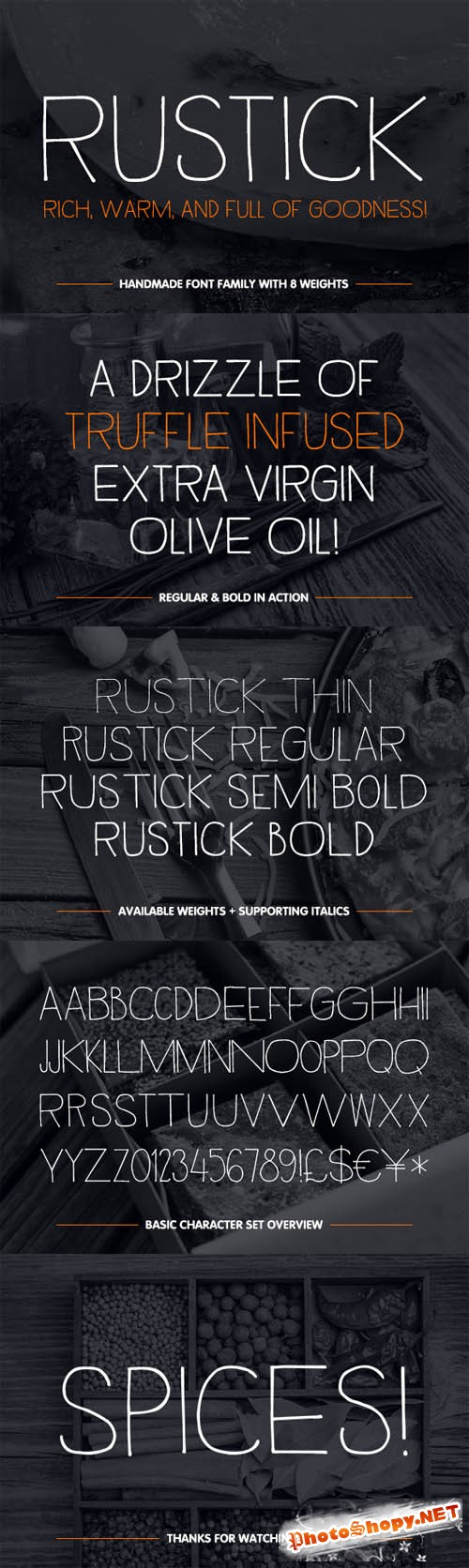 Rustick Type Family Font