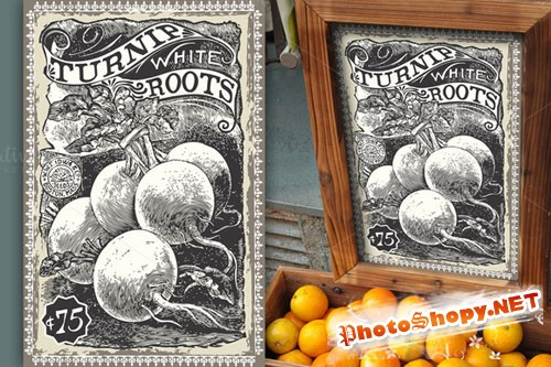 Greengrocer - Turnip Advertising - CM 201259