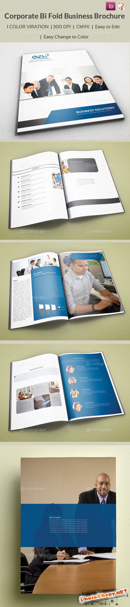 CodeGrape - Corporate Bi Fold Business Brochure 5271