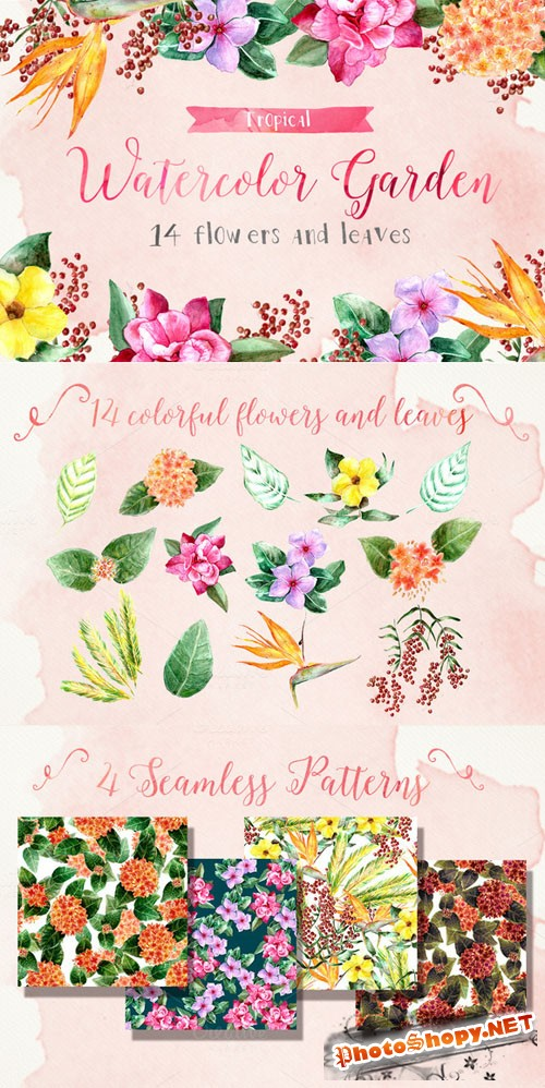 Tropical Watercolor Garden - Creativemarket 191420