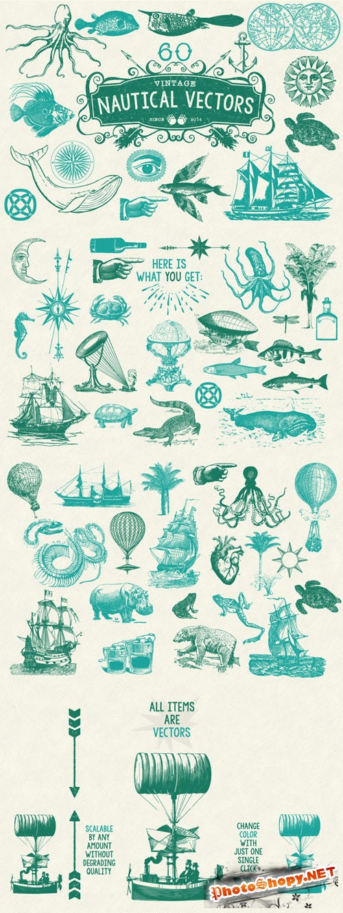60 Vintage Nautical Vectors - Creativemarket 199839