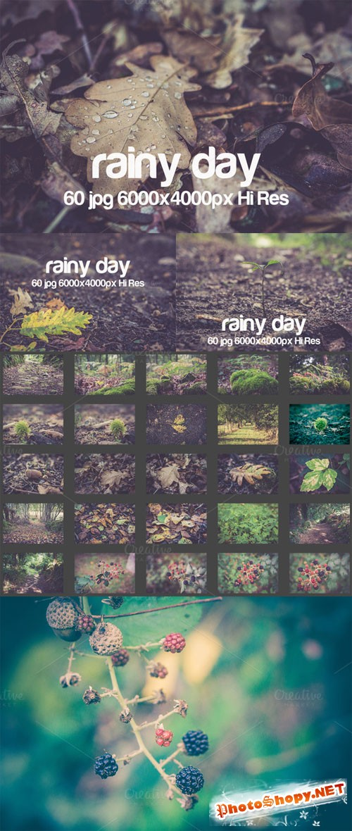 Creativemarket Rainy day 81492