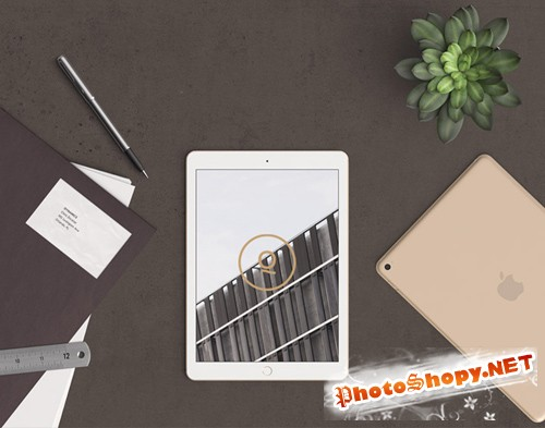 Scene Header with Ipad 62 PSD