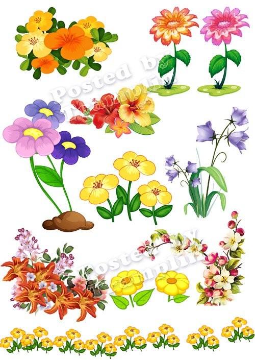 Цветы – клипарт на прозрачном фоне