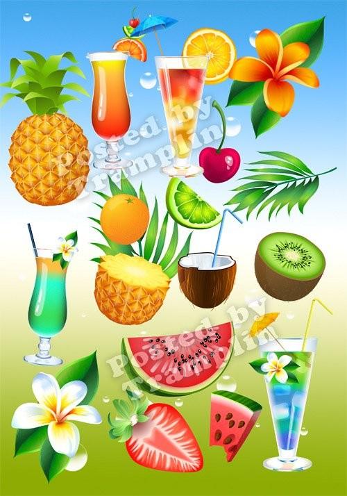 Летний клипарт – Овощи, фрукты, напитки, цветы