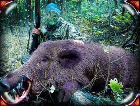 Фотошаблон для фотошопа - Охотник с тушей кабана