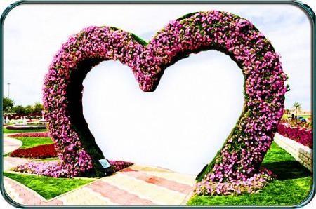 Красивая рамка - Цветочное сердце