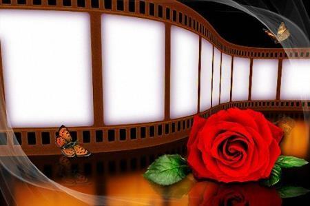 Фоторамка - Кинопленка с красной розой