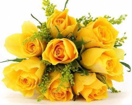 Картинки на прозрачном фоне - Цветы желтого цвета