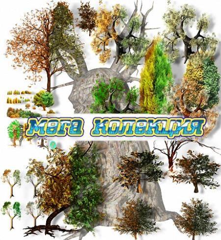 Клипарт прозрачный фон - Разные деревья
