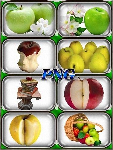 Фото png - Яблоки разных сортов